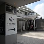 東京観光のおすすめスポット!すみだ水族館の魅力とは