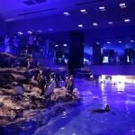 【癒しスポット】夜のすみだ水族館は青く光る都会のオアシス