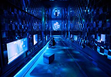 クラゲ | すみだ水族館 クラゲ | すみだ水族館 営業時間・料金 営業時間・料金 年間パスポー