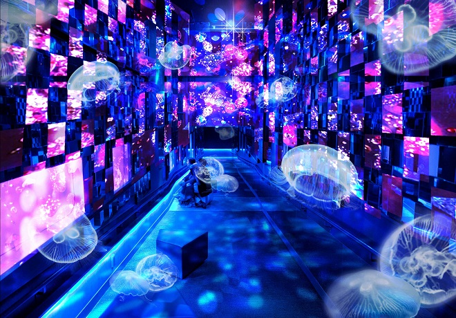 清川あさみとすみだ水族館がコラボレーション!<br />『Fairy tale in Aquarium~水と幻想の世界~』開催!